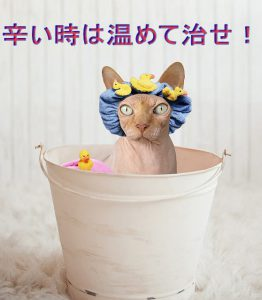 瞑想入浴が楽になる!ぞわぞわ感